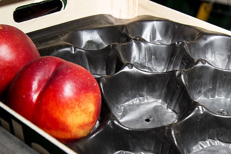 Alveolos de plástico para cajas de fruta