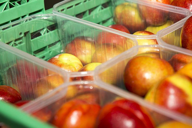 Cestas hortofrutícolas