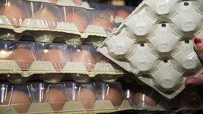 Estuches huevos