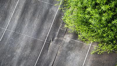 Anti-weed mesh