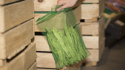Extruded mesh sacks