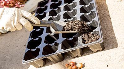 Black rigid polystyrene seedbed